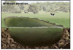 pond-aeration1.jpg